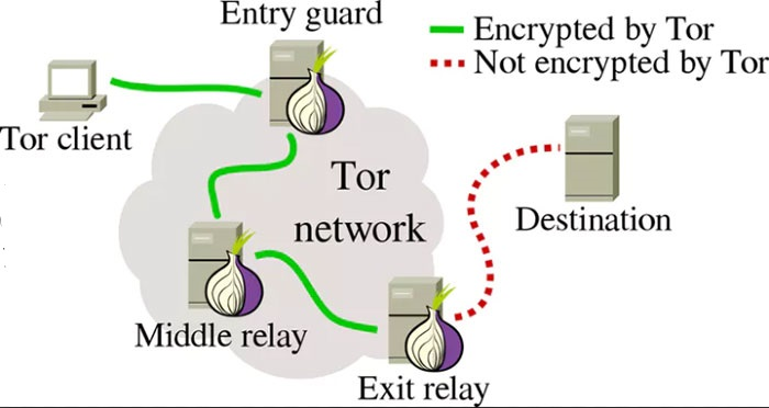 7 Facts About Tor Browser You Should Know Before Using It
