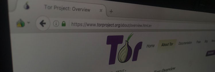 tor browser review